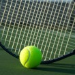 Tennis Ball and Racket — Stock Photo