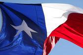 Texas devlet bayrağı — Stok fotoğraf