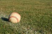 Baseball na polu — Zdjęcie stockowe