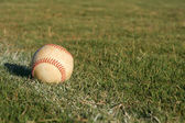 Baseball on the Field — Stock Photo