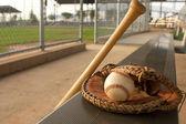 棒球棍和手套在独木舟 — 图库照片