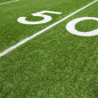 Stock Photo: AmericFootball Field Fifty Yard Line