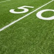 American Football Field Fifty Yard Line — Stock Photo #19677057