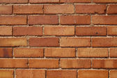 Burnt Orange Bricks — Stock Photo