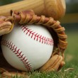 Stock Photo: Baseball in a Glove