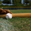 Baseball Bat and Glove on the Field — Stock Photo