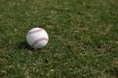 Baseball na pola trawy — Zdjęcie stockowe