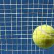 Tennis Ball on the Court — Stock Photo