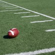 Stock Photo: AmericFootball Field Yard Lines