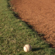Baseball in the outfield — Stock Photo