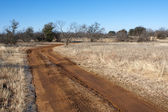Dirt Road in West Texas — Stock Photo