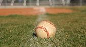 Baseball v trávě — Stock fotografie