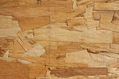 Close up texture of particle board — Stock Photo