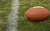 Voetbal op het gras — Stockfoto