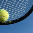 Tennis Ball on a Racket — Stok fotoğraf
