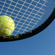 Tennis Ball on a Racket — Foto Stock