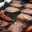 Barbecue on the Grill — Foto Stock