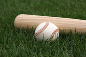 Baseball & Bat on the Grass — Stockfoto