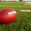 Stock Photo: Pro Football on Field