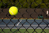 Tennis Ball in the Court Fence — 图库照片
