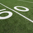 American Football Field Fifty Yard Line — Stock Photo #38317693
