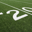 AmericFootball Field Twenty Yard Line — Foto Stock #38317725