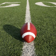 Stock Photo: Football along Fifty Yard Line