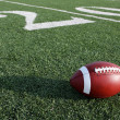 Stock Photo: Football along Twenty Yard Line