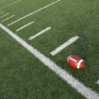 Stock Photo: AmericFootball on Field Angled