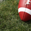 Stock Photo: Football Close up on grass