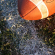 Stock Photo: Collegiate Football near yard line
