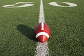 Football along the Fifty Yard Line — Stock Photo