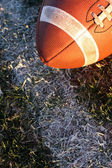 Collegiate Football near the yard line — Stock Photo