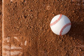 Baseball on the Outfield — Stock Photo