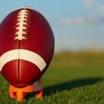 American football — Stock Photo #42227719