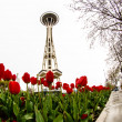 Seattle Space Needle with Tulips — Stock Photo