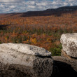 Fall in New York State — Stock Photo #14082090