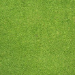 Stock Photo: Phone icon on green grass texture and background