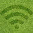 Wireless icon on green grass texture and background — Stock Photo #12179583