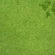 Word map on green grass texture and background — Stock Photo #12519460