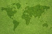 Word map on green grass texture and background — Stock Photo