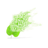 Green leaf of spoon on white background — 图库照片