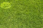 Citrouille d'halloween sur la texture de l'herbe verte et fond — Photo