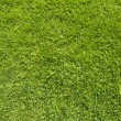 Bulb light on green grass texture and background — Stock Photo #12755034