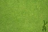 Sport ginnastica sul background e texture erba verde — Foto Stock