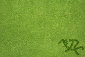 Sport riding horse on green grass texture and background — Stock Photo