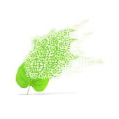 Green leaf of global on white background — Stock Photo