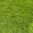 Mail icon on green grass texture and background — Foto Stock