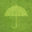Umbrella icon on green grass texture and background — Stock Photo