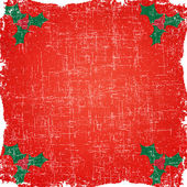 Berry of christmas on grunge paper background and pattern — Stock Photo